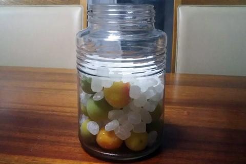 容器 保存 梅 シロップ